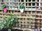 Restoring Hampshire Garden Chapter