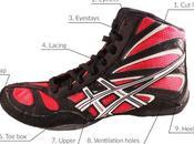 Anatomy Wrestling Shoe