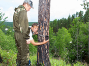 Early Season Trail Camera Placement Strategies