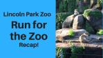 Lincoln Park Zoo, Recap!