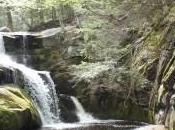 Buffalo Creek Falls Minute Meditation