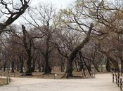 UNESCO World Heritage: Gyeongju Historic Areas