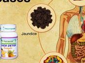 Treatment Severe Liver Diseases with Ayurveda Signs Symptoms