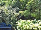 Denmans Garden Visited Last!