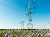 What Texas Energy Emergency?