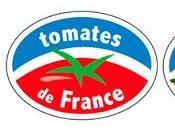 Fantastic French Website Tomates France