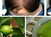 Guava Leaves Stop Your Hair Falling-100% Make Grow Like Crazy