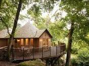 Literary Villains, Summer Reads Idyllic Treehouse East Sussex (where Stay)