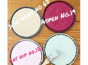Bridget Beari Color Rule Test Room Before Buy!
