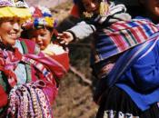 Legacy Human Migration Diversity Languages Americas
