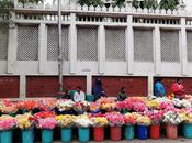 Photo Essay: Bengaluru Flower Market, Market