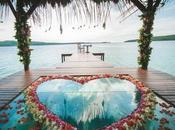 Super Cool Honeymoon Haven India