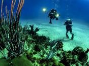 Dives: Best Scuba Diving World