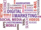 Steps Memorable Venture Marketing Rollout