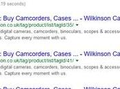 Audit Wilkinson Camera Ecommerce Website