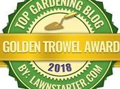 Love Letter Gardeners