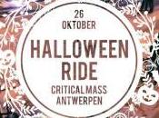 This Weekend Antwerp: 26th, 27th 28th October