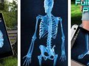 Best X-ray Prank Apps (android/iPhone) 2019