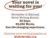 NaNoWriMo: Surviving Days Insane Writing Without Losing Your Mind!
