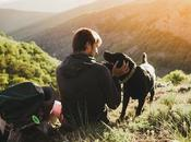 Travel with Emotional Support Animals?