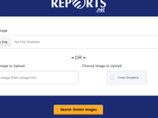 Reverse Image Search Tool Discover Similar Photos