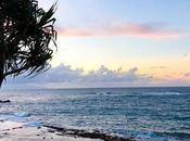 Maui Recap
