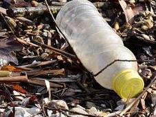 Schools Took Pledge Help Eradicate Single-Use Plastics 2022