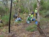 Need Revegetation Council