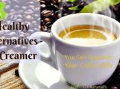 Healthy Alternatives Creamer (Keto Friendly)