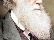 Darwin Petition Drive
