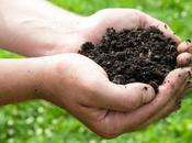 Topsoil Promotes Safe Healthy Growth
