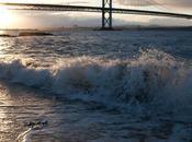 Forth Road Bridge Dusk