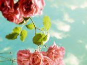 Color Inspiration- Aqua Pink