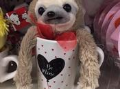 Really, Really Valentine's Gifts 2019