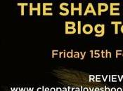Shape Lies Rachel Abbott #BlogTour