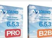 Loaded Commerce Review 2019: Does Worth (Pros Cons)