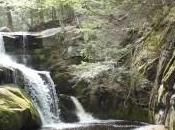 Wadsworth Falls Minute Meditation