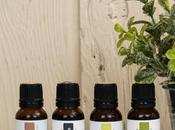 Simply Earth Essential Oils Love