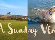 Sunny Sunday Herrington Country Park Youtube Video