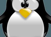 Install Linux Chromebook?
