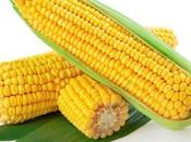 Dogs Corn Healthy Pups?