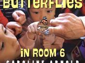 REVIEW BUTTERFLIES ROOM