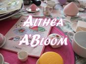 Althea A'Bloom Product Range Review