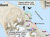 Goes Global: Detection Allochthonous Anthropogenic Genes High Arctic Regions