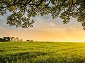 What Biodynamic Farming?