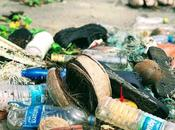 Ways Reduce Waste Your Every Life