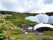 Family Friendly Attractions Cornwall