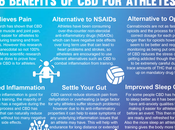 Reasons Recommended Athletes
