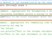 Best Practices Write Comments Your Code Should I...