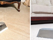 Tips from Pros Spot Carpet Cleaning Services 2019